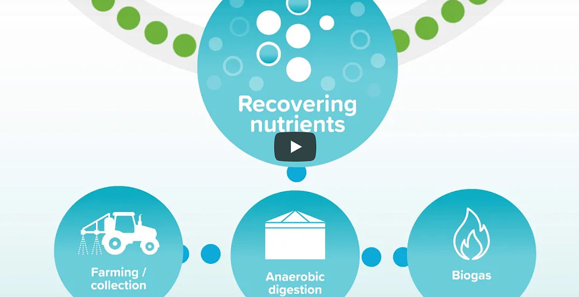 VIDEO: Nutrient Recovery by Southern Water at Nereus Peel